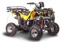 ATV Ninja 110